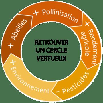 objectif de l'association confidences d'abeilles
