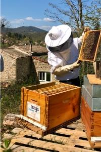 Association Confidences d'Abeilles soutien abeille avec les entreprises pour parrainer une ruche.