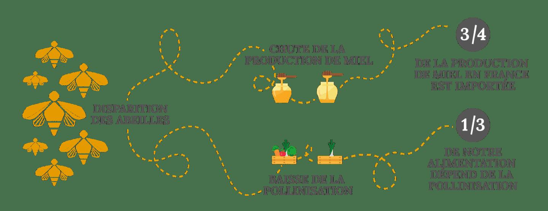 Infographie le contexte de pourquoi soutenir les abeilles